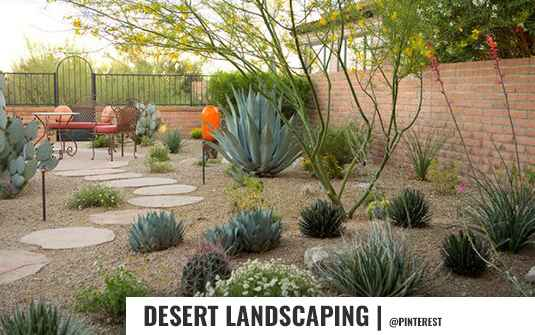 Desert style landscaped backyard for residential homes