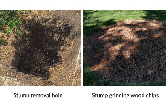 side by side photos of stump removal hole and stump grinding wood chips