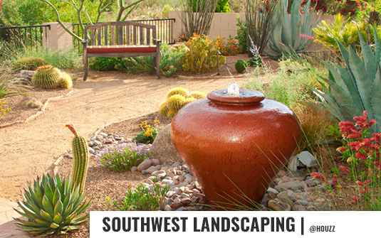 southewest style landscaped backyard with cactus plants in orange county